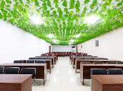 怡莱精品保定容城白洋淀酒店360全景图
